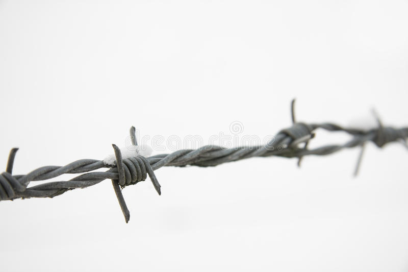 Barbed Wire In Snow Royalty Free Stock Photography