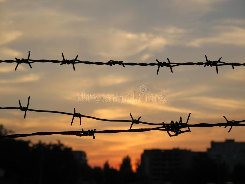 Barbed wire at sunset in dark city royalty free stock image
