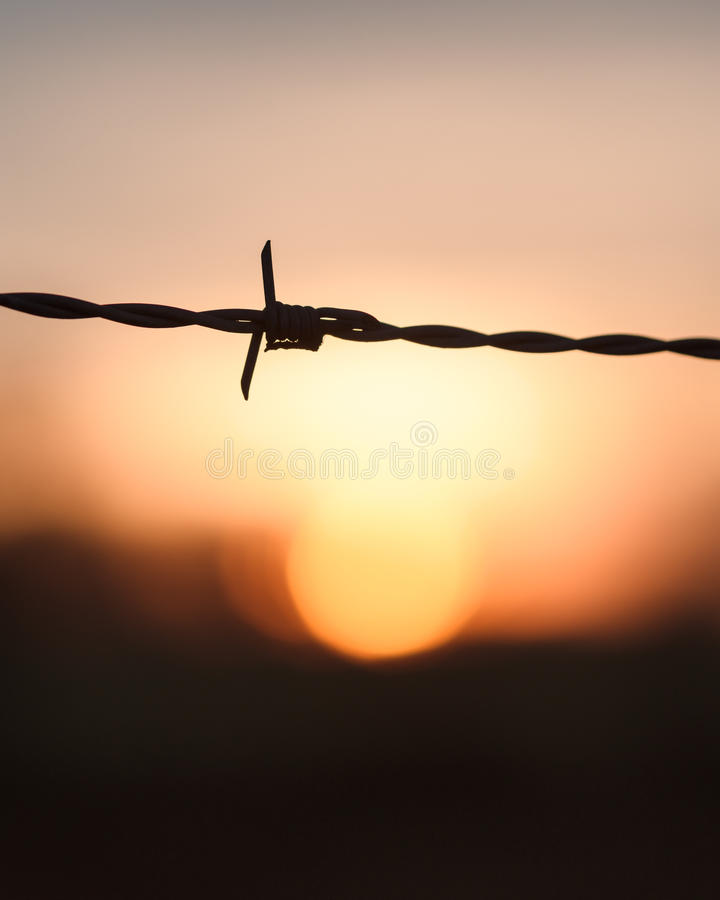 Barbed Wire at Sunset. A macro image of barbed wire silhouetted against a defocused setting winter sun, Taken in Wymondham, Norfolk stock images
