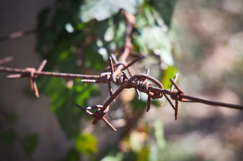 Barbed wire tied to a pole, close-up royalty free stock photography