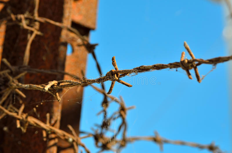 Barbed wire at times reminiscent of concentration camps.  royalty free stock images