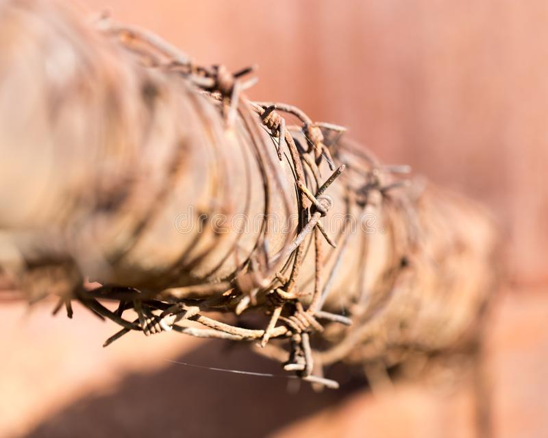 Barbed wire on tube stock photo