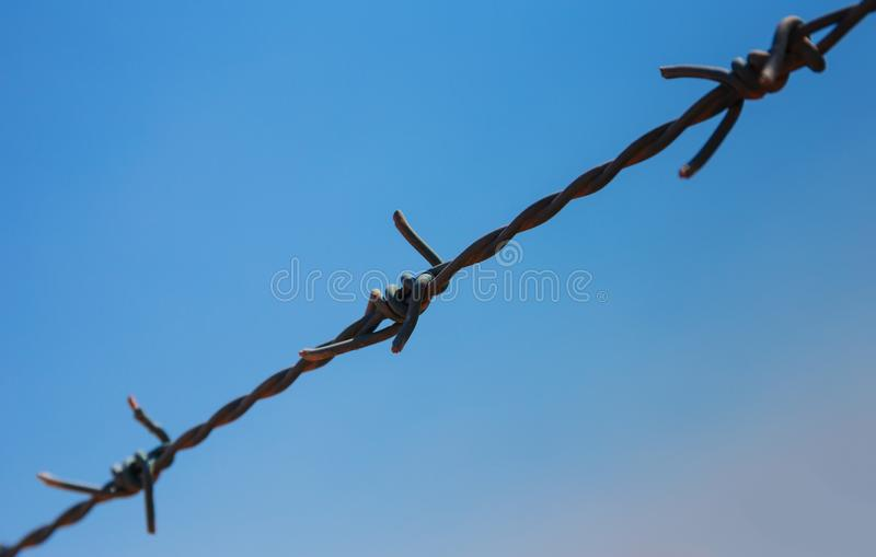 Barbed wire. United Arab Emirates stock photography