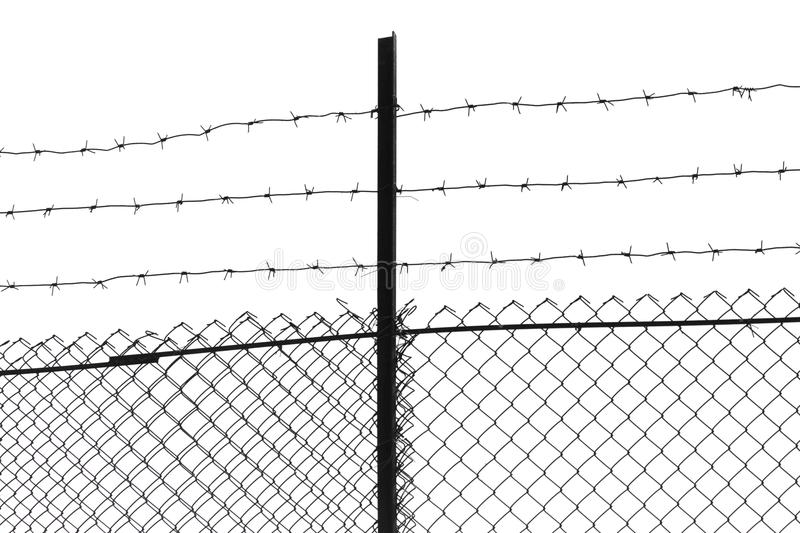 Barbed wire on a white background stock photos