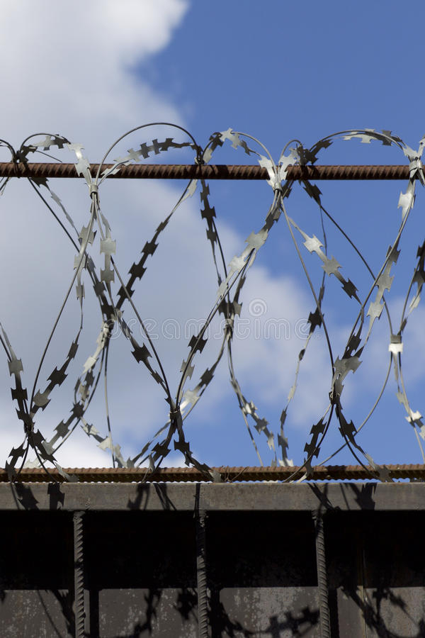 Barbed Wire Wound To The Top Of A Fence Stock Photo - Image of hedge ...
