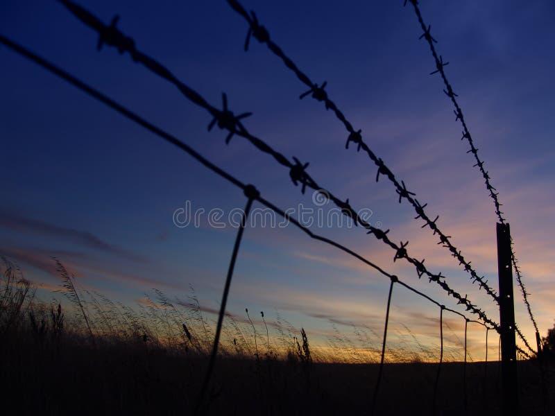 barbed wschód słońca zdjęcie royalty free