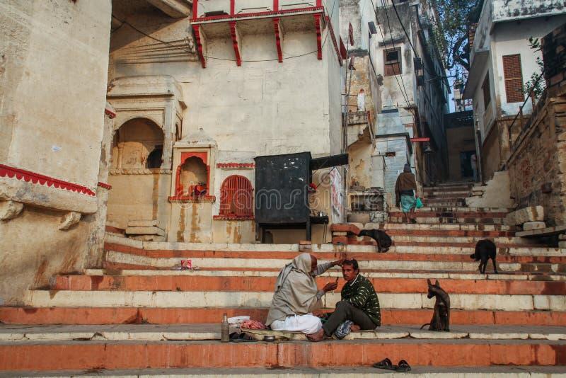 Barbeiro local em benares de Varanasi com uma audiência especial do cão disperso, Uttar Pradesh, Índia fotografia de stock royalty free