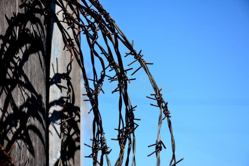 Barbelé comme symbole d'emprisonnement et de violation des rihts humains photographie stock libre de droits