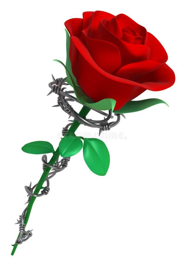 Barbelé Rose illustration stock