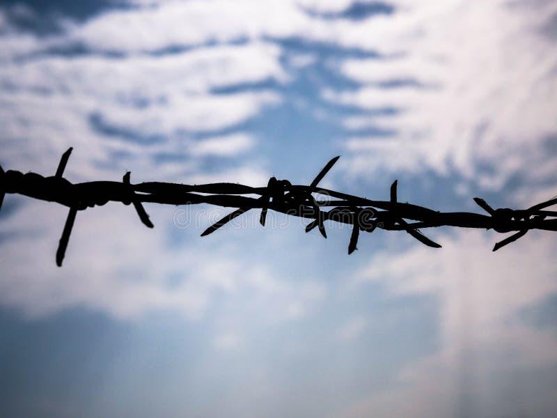 Barbel? sur le fond de ciel Concept avec l'espace de copie pour le secteur restreint, emprisonnement, liberté photo stock