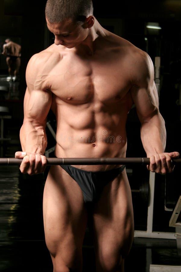 Download Barbell biceps curls stock image. Image of black, shape - 2066185