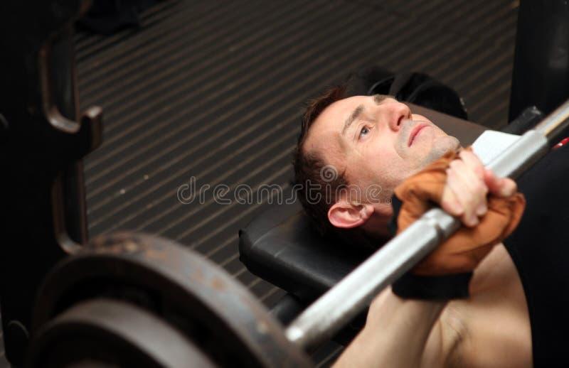 Barbell del levantamiento de pesas del entrenamiento del Bodybuilding imagenes de archivo
