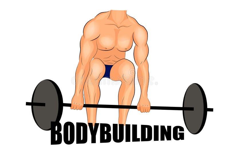 Barbells de elevación bodybuilding libre illustration