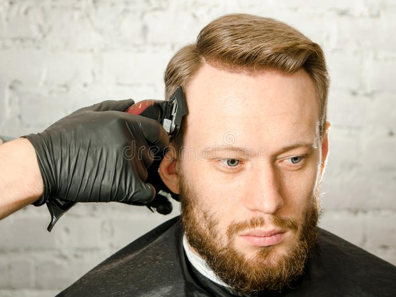 Barber hand in gloves cut hair and shaves adult gihger bearded man on a brick wall background. Close up portrait of a guy royalty free stock image
