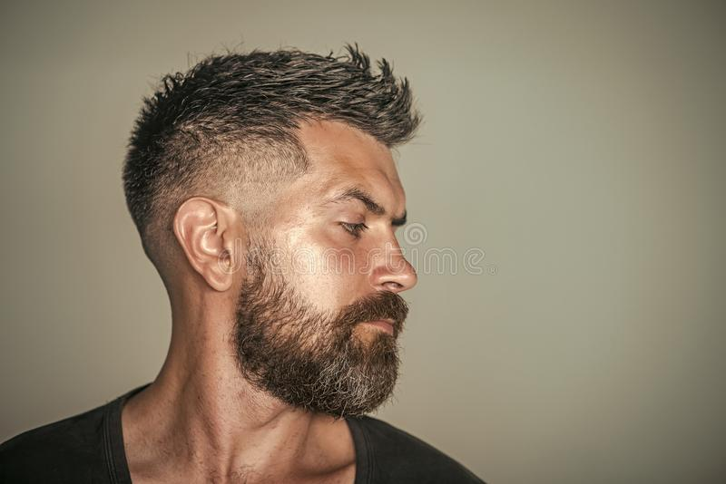 Barber shop. Hair style. Man with bearded face profile and stylish hair. Pose on grey background. Barber, barbershop, hairdresser or beauty salon concept, copy royalty free stock photos