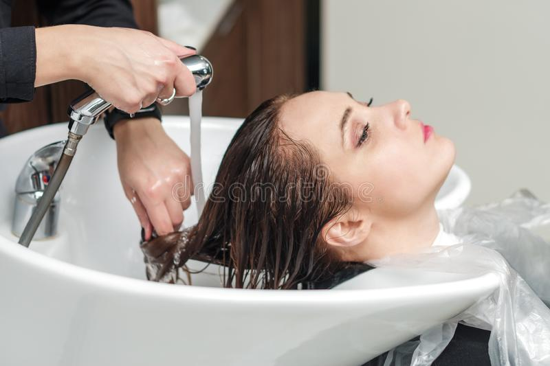 Barber washes the girl`s head in the barbershop royalty free stock images