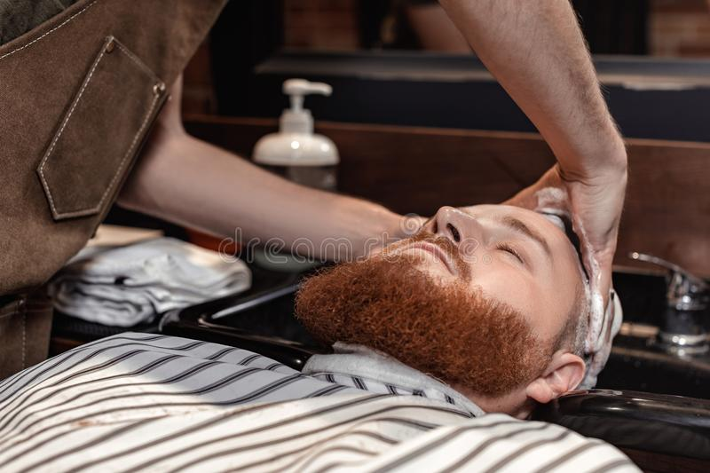 Barber and bearded man in barber shop royalty free stock image