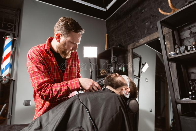 Beard cutting, face care. Barber work with clipper machine in barbershop. Professional trimmer tool cuts beard and hair. Barber work with clipper machine in royalty free stock photo