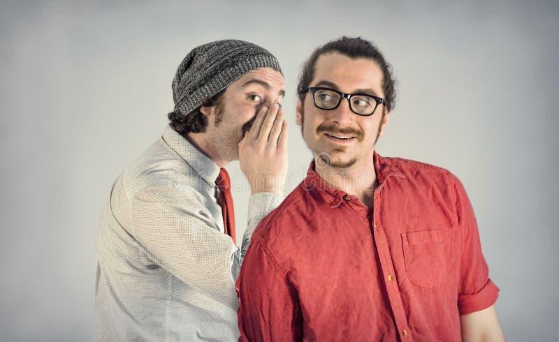 Barbes d'hommes de jumeaux image stock