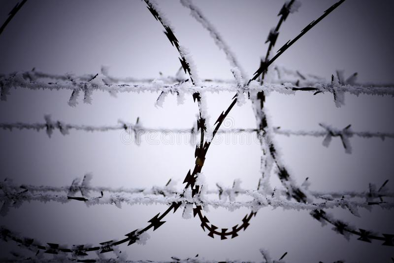 Barbeta druciany ogrodzenie przy zimnym zima dniem obrazy royalty free