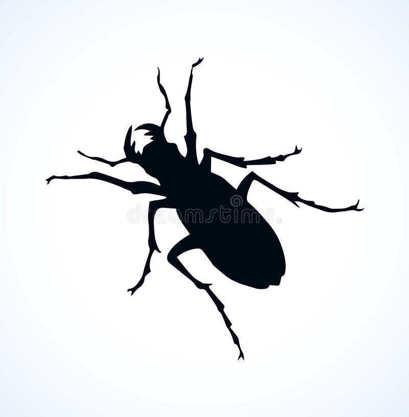Barbilla del escarabajo Gráfico del vector ilustración del vector