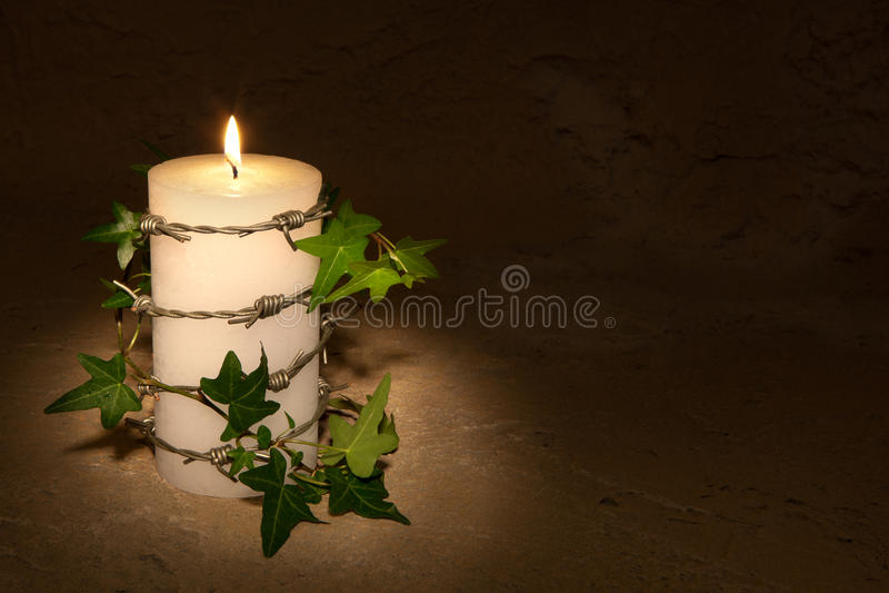 barbwire κερί στοκ εικόνα
