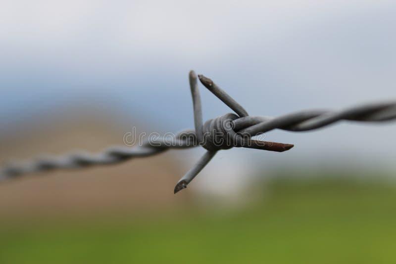 barbwire στοκ εικόνα με δικαίωμα ελεύθερης χρήσης
