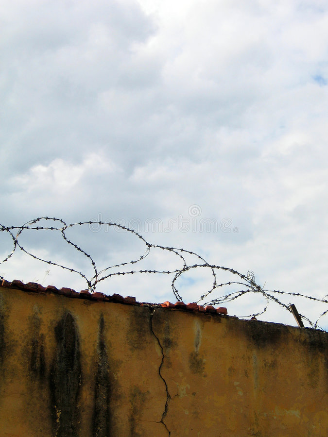 Download Barbwire stock photo. Image of wall, restrain, border, protect - 179784