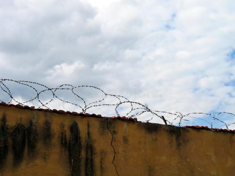 Barbwire Free Stock Photo