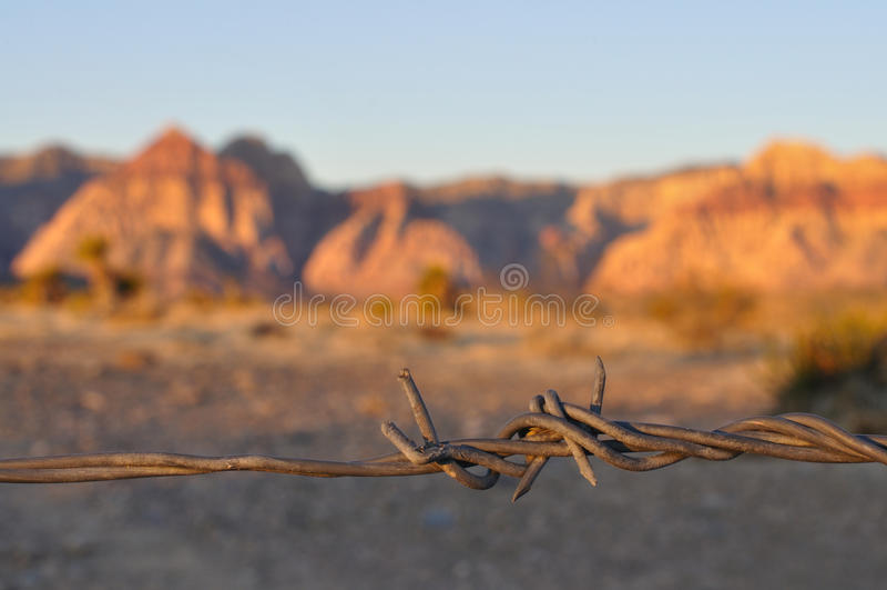 Barbwire Stock Photo