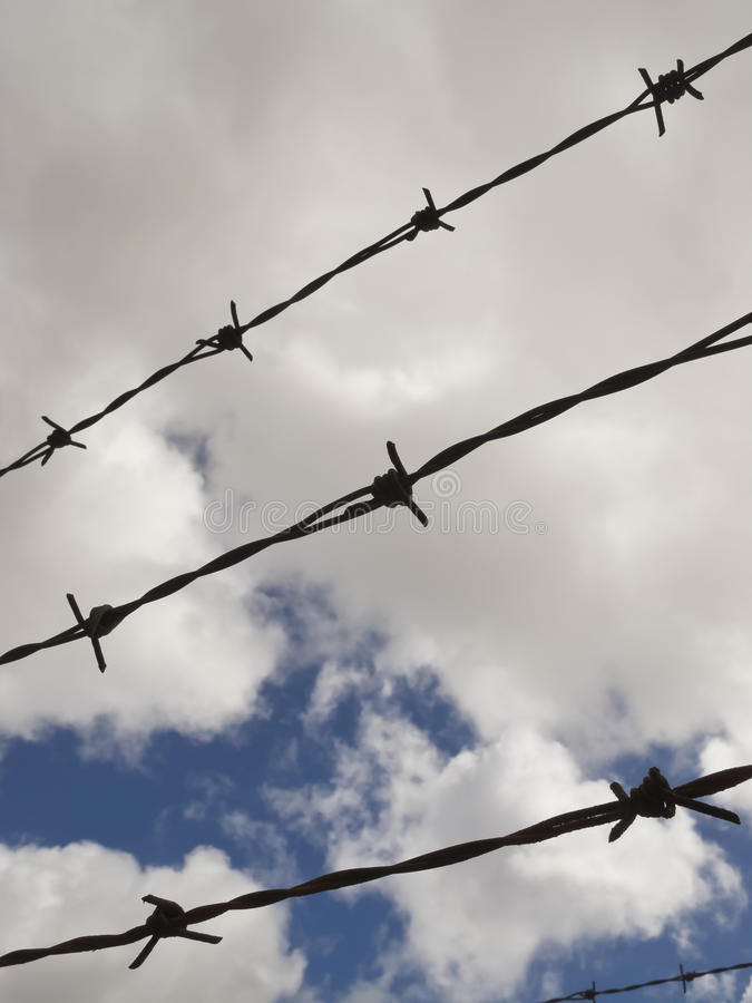 Download Barbwire stock photo. Image of private, guard, freedom - 28616570