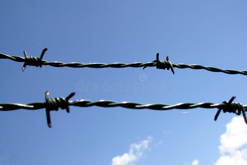 Download Barbwire stock photo. Image of davidundderriese, blue - 5167788