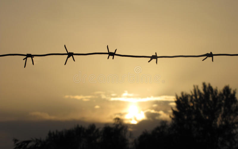 Barbwire al tramonto fotografie stock libere da diritti