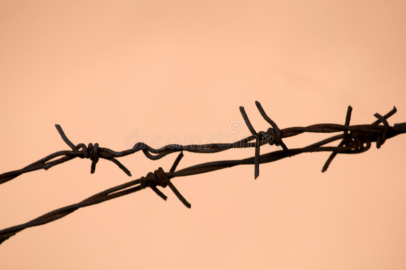 Barbwire barrier stock images