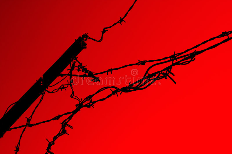 Download Barbwire barrier on red stock image. Image of camp, fencing - 855575