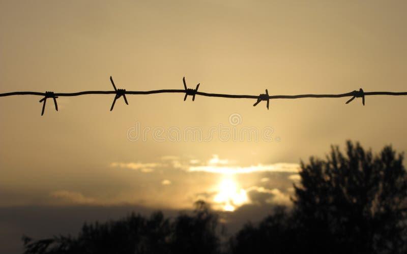 Barbwire bij zonsondergang royalty-vrije stock foto's