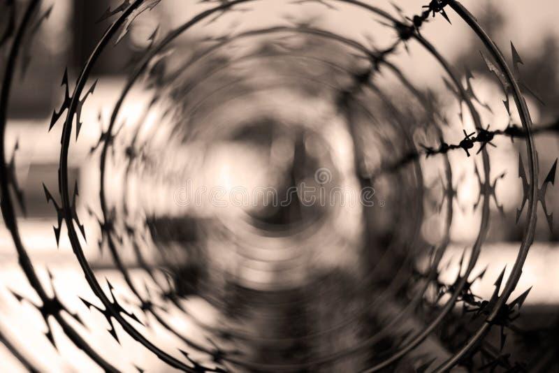 Barbwire no fundo abstrato com copyspace imagens de stock royalty free