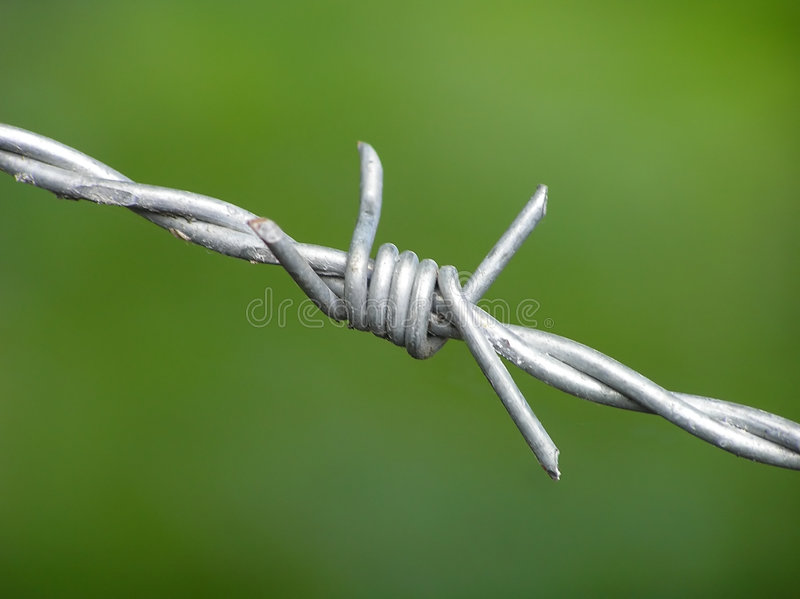 Download Barbwire Su Priorità Bassa Verde Immagine Stock - Immagine di macro, industriale: 204669