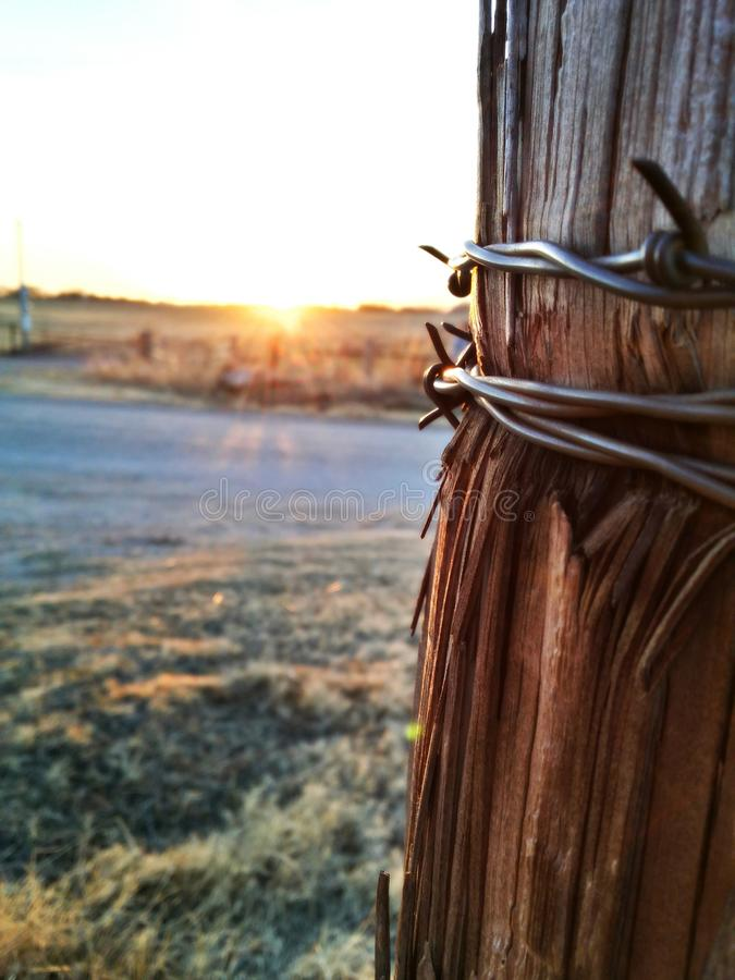 Download Barbwire Sunset Stock Photo - Image: 43977941