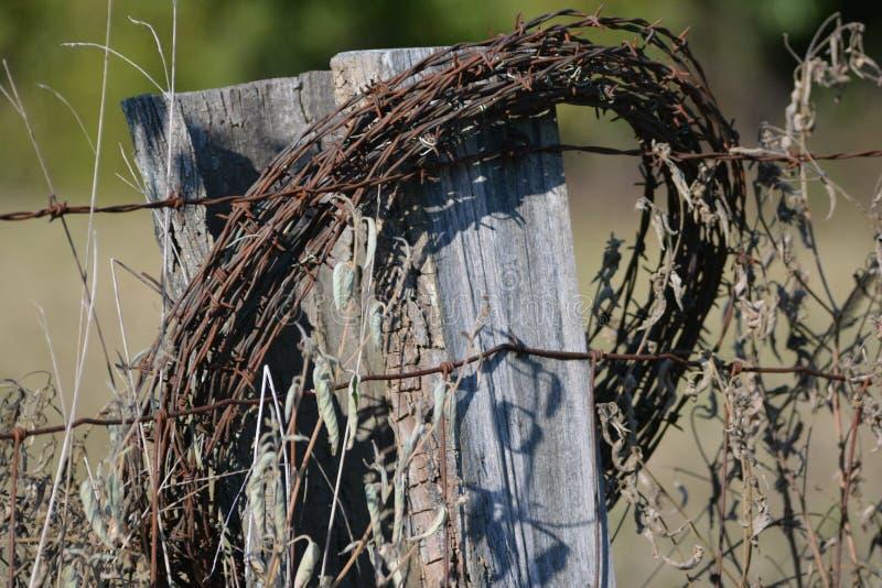 Barbwire viejo en la cerca foto de archivo