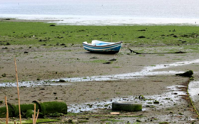 Barca a bassa marea fotografia stock libera da diritti