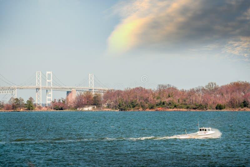 Barca del Waterman di Maryland sulla baia di Chesapeake vicino al ponte della baia fotografie stock