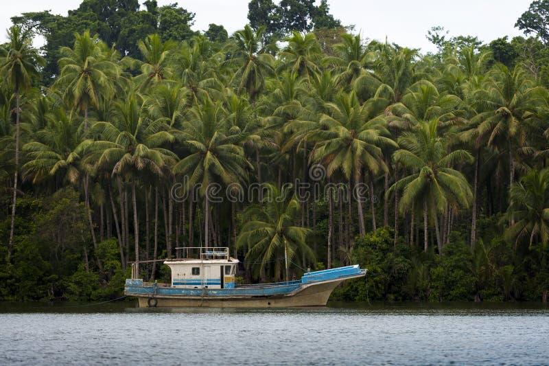 Barca di fiume sull'isola di Seram, Raja Ampat, Indonesia fotografia stock libera da diritti