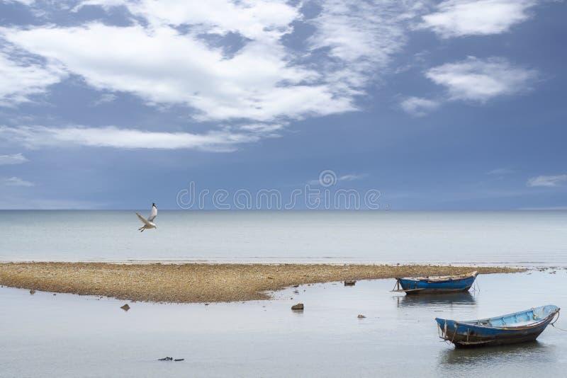 Barca di legno locale blu che parcheggia vicino alla spiaggia della baia fotografie stock