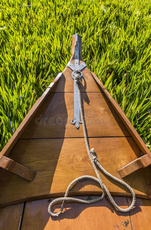 Barca e Waterplants dell'utente fotografia stock libera da diritti