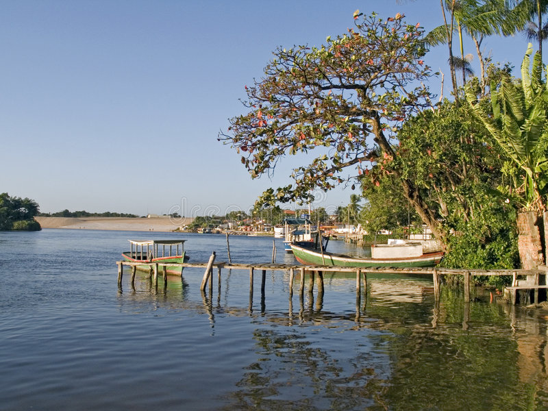 Barca fra gli alberi II fotografia stock