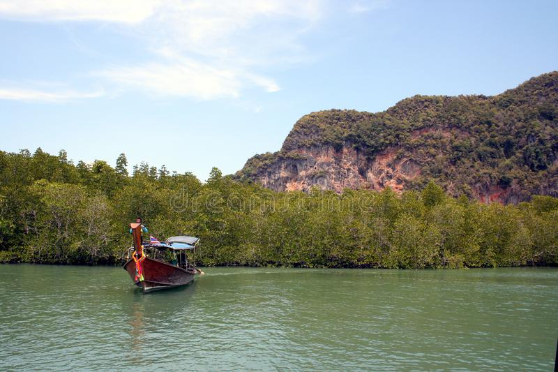 Barca nelle mangrovie Tailandia fotografie stock