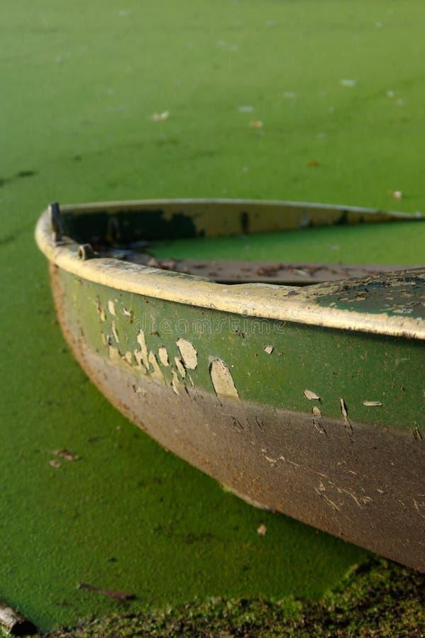 Barca a remi di legno attraccata parzialmente incavata con le foglie immagine stock libera da diritti