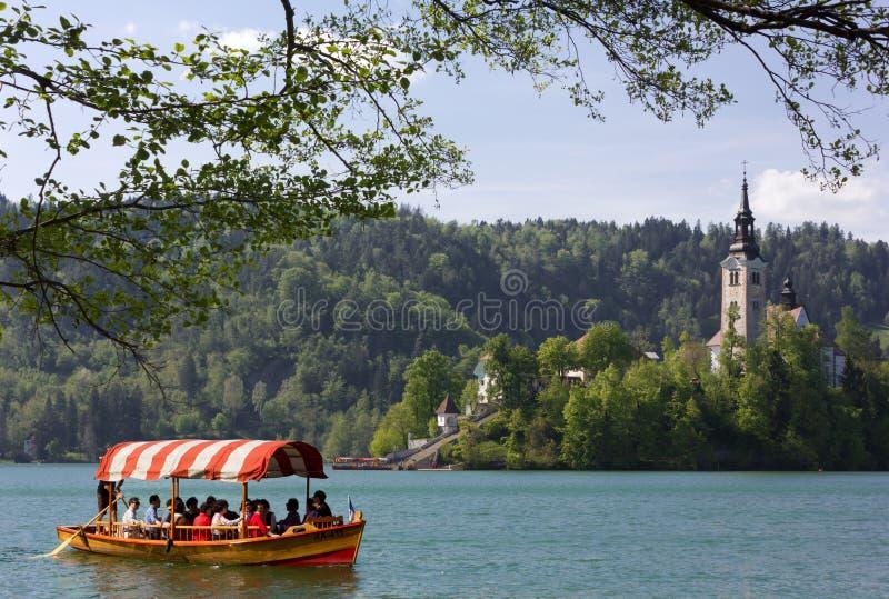 Barca a remi turistica sul lago sanguinato fotografia stock