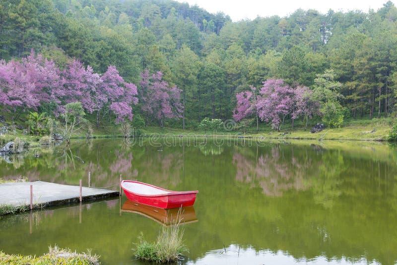 Barca rossa nel lago fotografia stock